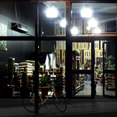 Autoconstrucción de una tienda con pallets reciclados
